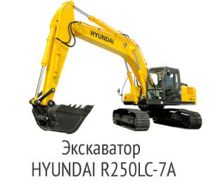 41-300x266
